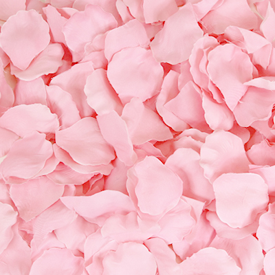 party decorations- flower petals