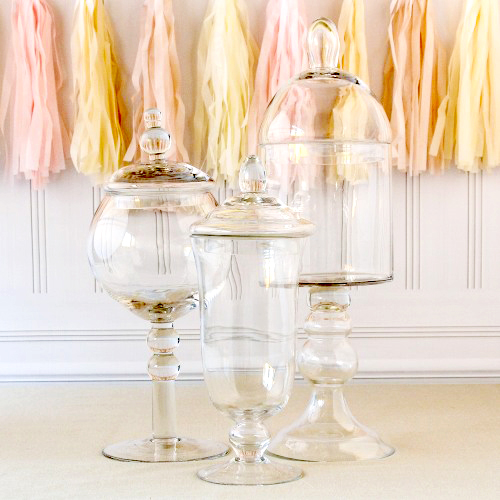 party supplies- apothecary jars
