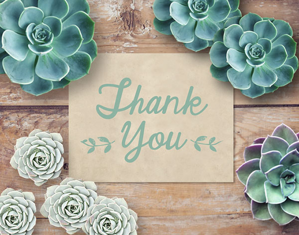 Rustic Chic Thank You Cards