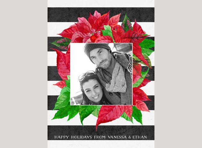 Black & white stripes & red poinsettia Christmas cards